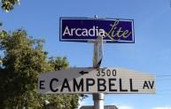 Arcadia Lite Phoenix